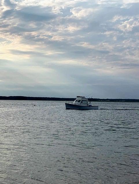 boat resized